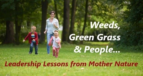 Weeds, Green Grass & People… Leadership Lessons from Mother Nature