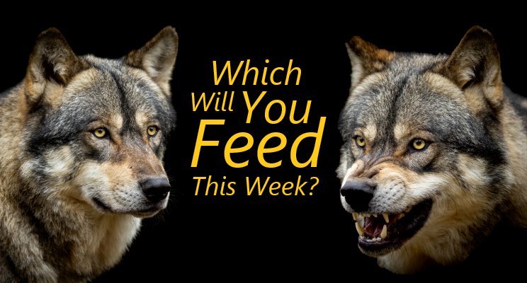 Which Will You Feed This Week?